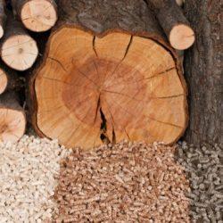 Biomasa-pro-vytápění