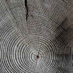 wood-618673_960_720