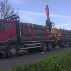 275341173_8_1000x700_sprzedam-drewno-opalowe-galeziowkerozpalkedrewno-kominkowe-