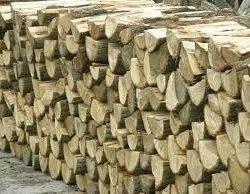 drewno kmk